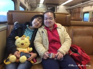 on-the-train-2014