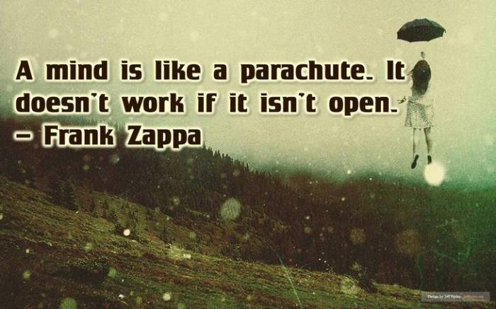 zappa-funny-inspirational-quotes