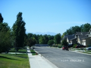 A look into the neighborhood