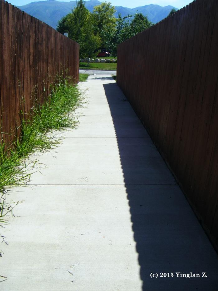 Alley (Beneath Your Feet)