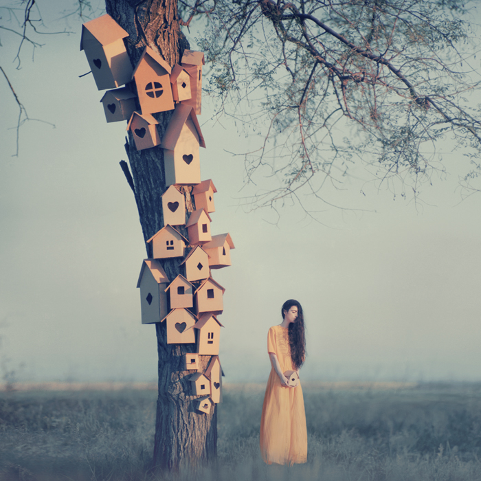 hope-and-houses-by_oprisco-d65ya98