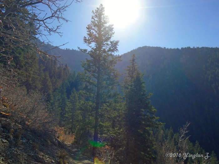 indian-trail-4