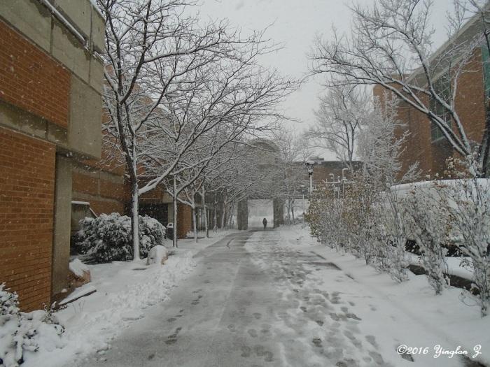 snow-1