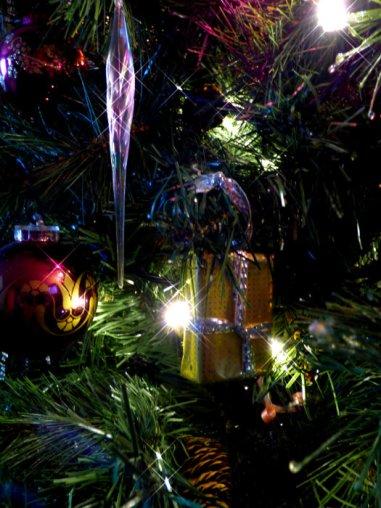 christmas-2014-009