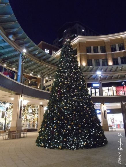 The giant Christmas tree at the mall