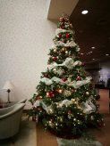 Christmas tree in the visitor center