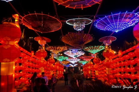 Colorful lanterns for Chinese New Year