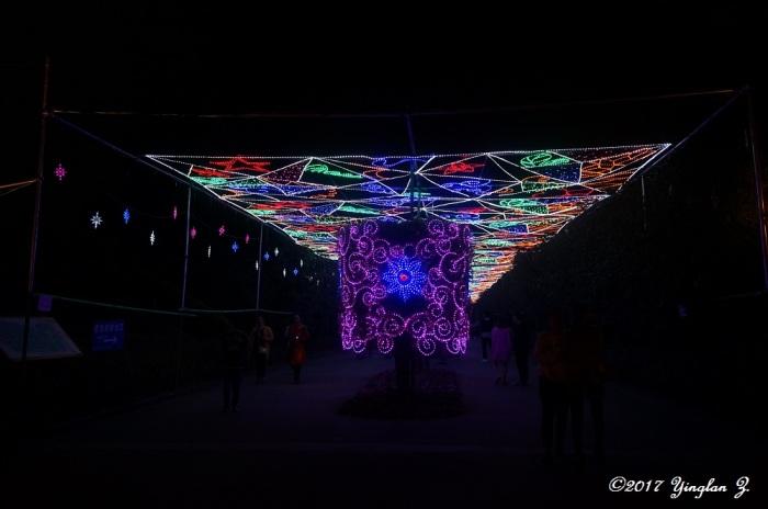 light-path-4
