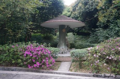 mushroom-pavilion