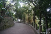 Zhongshan Park 1