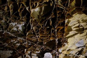 Natural-formed Gypsum at Wind Cave National Park