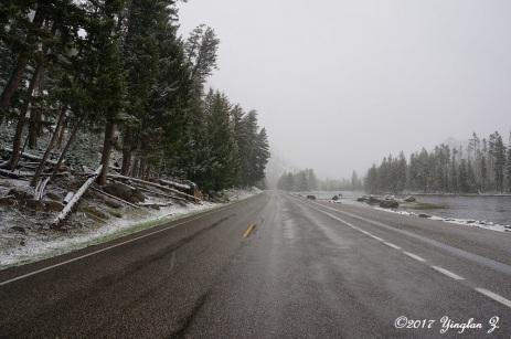 Snow in Yellowstone