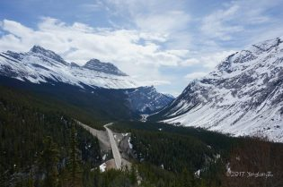 Looking at Icefield Parkway