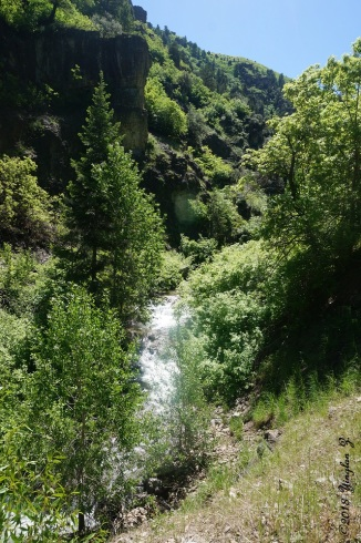 Wheeler Creek 18