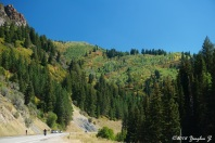 Big Cottonwood 1