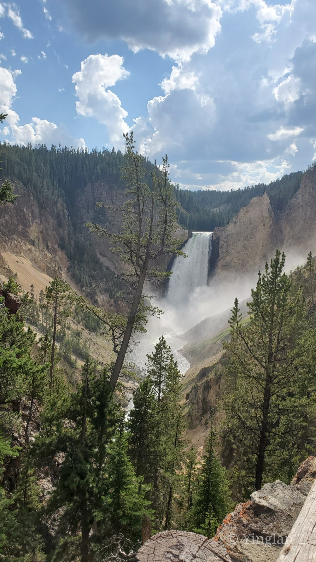 Yellowstone 2021 Day 2